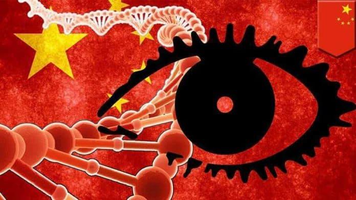 Ученые беспокоятся: Китай создает обширную базу данных ДНК Недавно из отчета ASPI стало известно, что официальный Пекин собирает образцы ДНК мужского населения. Сторонники Пекина утверждают, что база данных ДНК будет помогать расследованию преступлений. Тем не менее, активисты и ученые опасаются, что такая база данных будет использоваться в гнусных целях, в том числе для усиления государственного контроля над гражданами. Китай сосредоточен на каталогизации STR-маркеров Y-хромосом, которые потенциально могут быть использованы для поиска членов семьи преступника. Поэтому, если у полиции будет образец ДНК человека, но они не знают, кто он или кто члены его семьи, все, что им нужно сделать, это сравнить STR-маркер Y-хромосомы с информацией в базе данных ДНК. Все его родственники-мужчины по отцовской линии могут быть идентифицированы полицией с помощью этого метода. Правоохранительные органы из нескольких стран уже используют такие методы отслеживания ДНК для поимки преступников. Однако проблема с Китаем заключается в том, что база данных будет контролироваться партией. Обычно данные ДНК, собранные для расследования, уничтожаются после закрытия дела. Но Пекин вряд ли будет следовать такой практике. Вместо этого, все собранные данные будут храниться вечно, чтобы использоваться партией в соответствии с ее интересами. Некоторые ученые опасаются, что база данных ДНК может быть использована для выслеживания родственников скрывающегося преступника, критикующего партию. Тогда китайское правительство сможет наказать членов семьи, тем самым оказывая давление на такого человека, чтобы он не мог скрываться. Китай также сможет строго проводить свою политику в области контроля рождаемости. Общины меньшинств, такие как уйгуры, тибетцы, казахи и т.д., в будущем столкнутся с большими трудностями, поскольку Пекин может точно отслеживать их численность и применять методы, направленные на их сокращение. Синьхуа Поддерживаемое государством информационное агентство