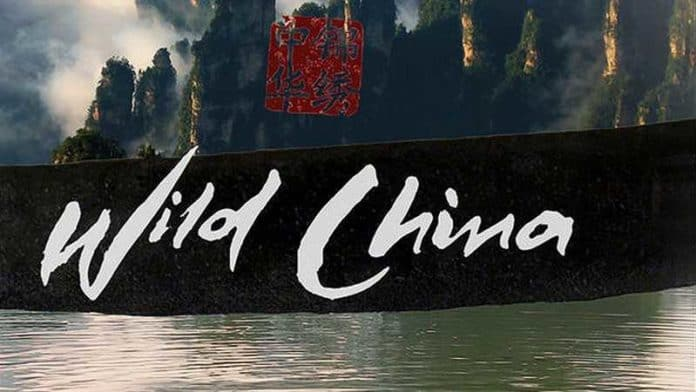 5 лучших документальных фильмов о Китае